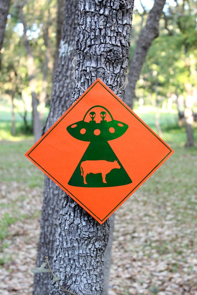 Alien abduction warning sign project - free printables