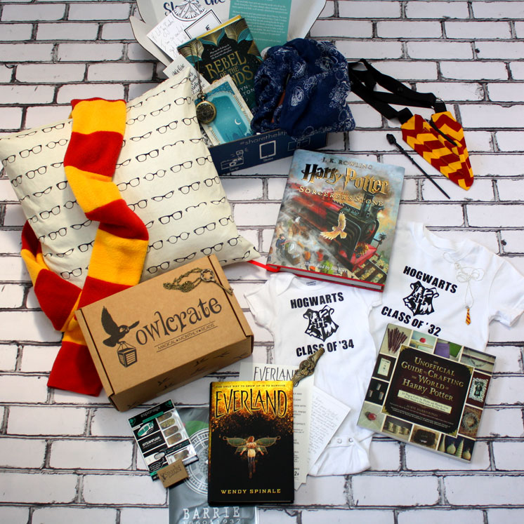 Harry Potter everything. Great book nerd gifts and book swag.